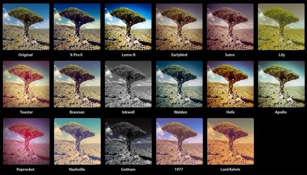 93831-instagram2-presets-for-lightroom-samples-tree-original-1358439909