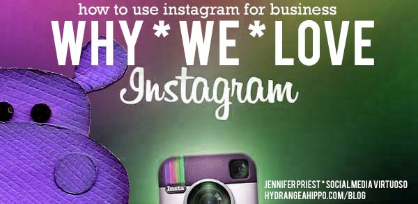 Why-we-love-instagram-using-for-business-hydrangea-hippo-jennifer-priest-social-media-tips