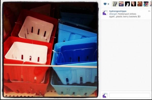 target-dollar-spot-berry-baskets-instagram-hydrangea-hippo