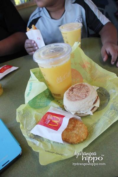 McDonalds-Blogger-Breakfast-Jennifer-Priest-Hydrangea-Hippo 002