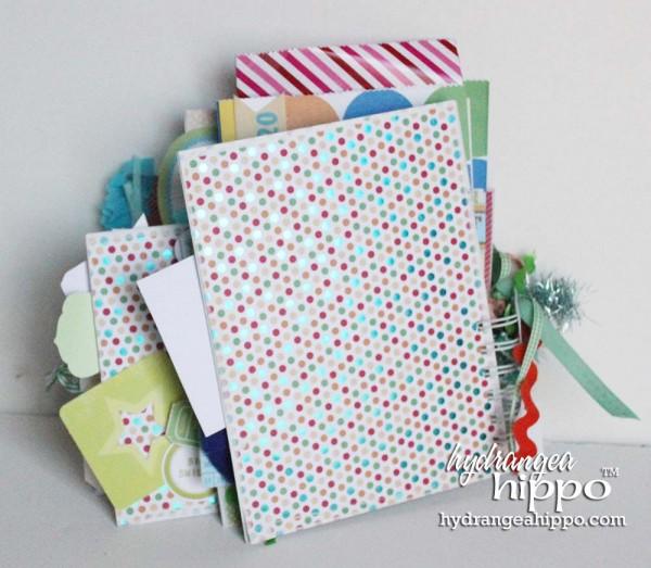 Boy-Birthday-Book-Hydrangea-Hippo-Jennifer-Priest