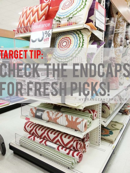 Splurge-vs-Save-Target-Rug-Hydrangea-Hippo-TITLE