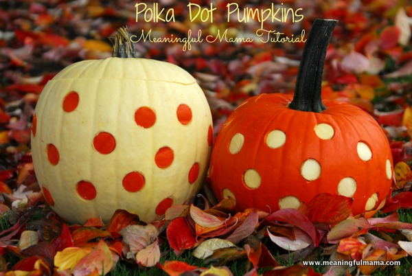 1-polka-dot-pumpkins-two-toned-apple-corer-027