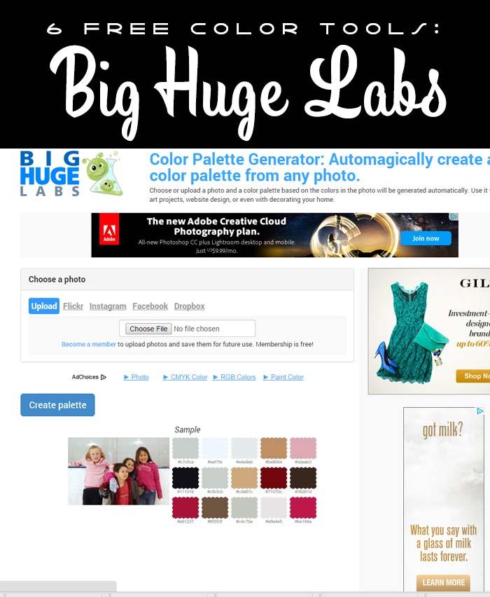 Hydrangea Hippo - Big Huge Labs