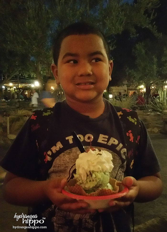 2014-12 2015 Disneyland Guide Review by Hydrangea Hippo - Best Place for Ice Cream at Disneyland