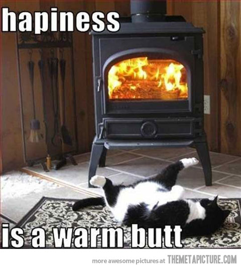 funny-cat-stove-warm-butt