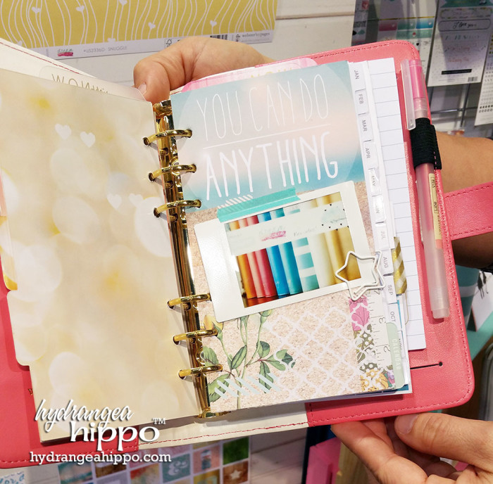 2015-01 CHA 2015 Wesbters Pages Planners 3