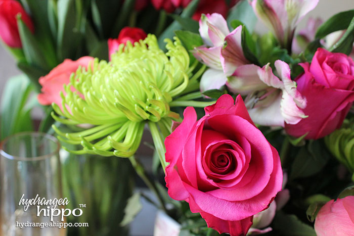 Closeup of Rose from ProFlowers Valentine Arrangment - Affordable way to decorate for a romantic affair